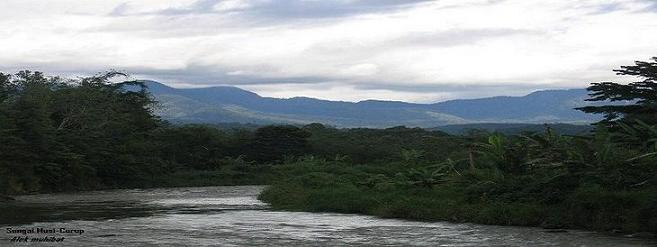 Sungai Musi Curup