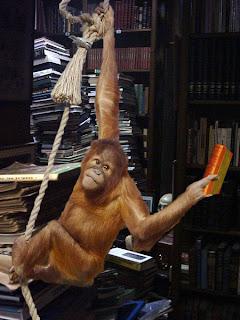 ¡Próximas nuevas adquisiciones en bibliotecarios!