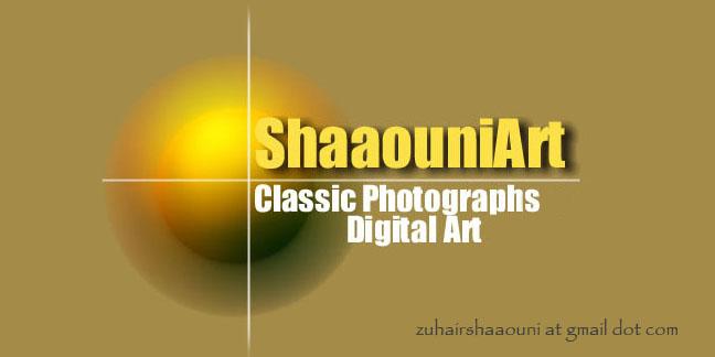 Shaaouni Art