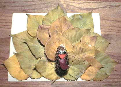Fun and facts with kids fall leaf inspirations with kids for Crafts made from nature