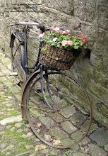 N'emmenez pas vos vélos, nous vous les prêterons...