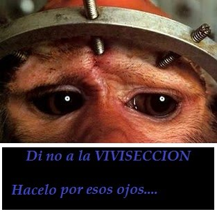 VIVISECCION