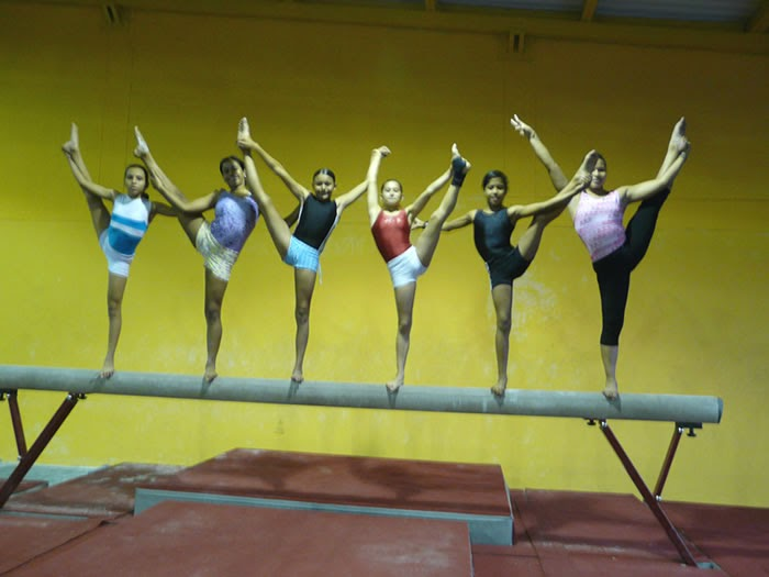 Laenciclopedia gimnasia concepto historia disciplinas for Definicion de gimnasia