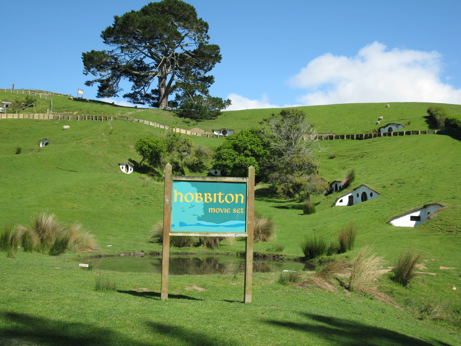 New Zealand Lord Of The Rings North Island Tour