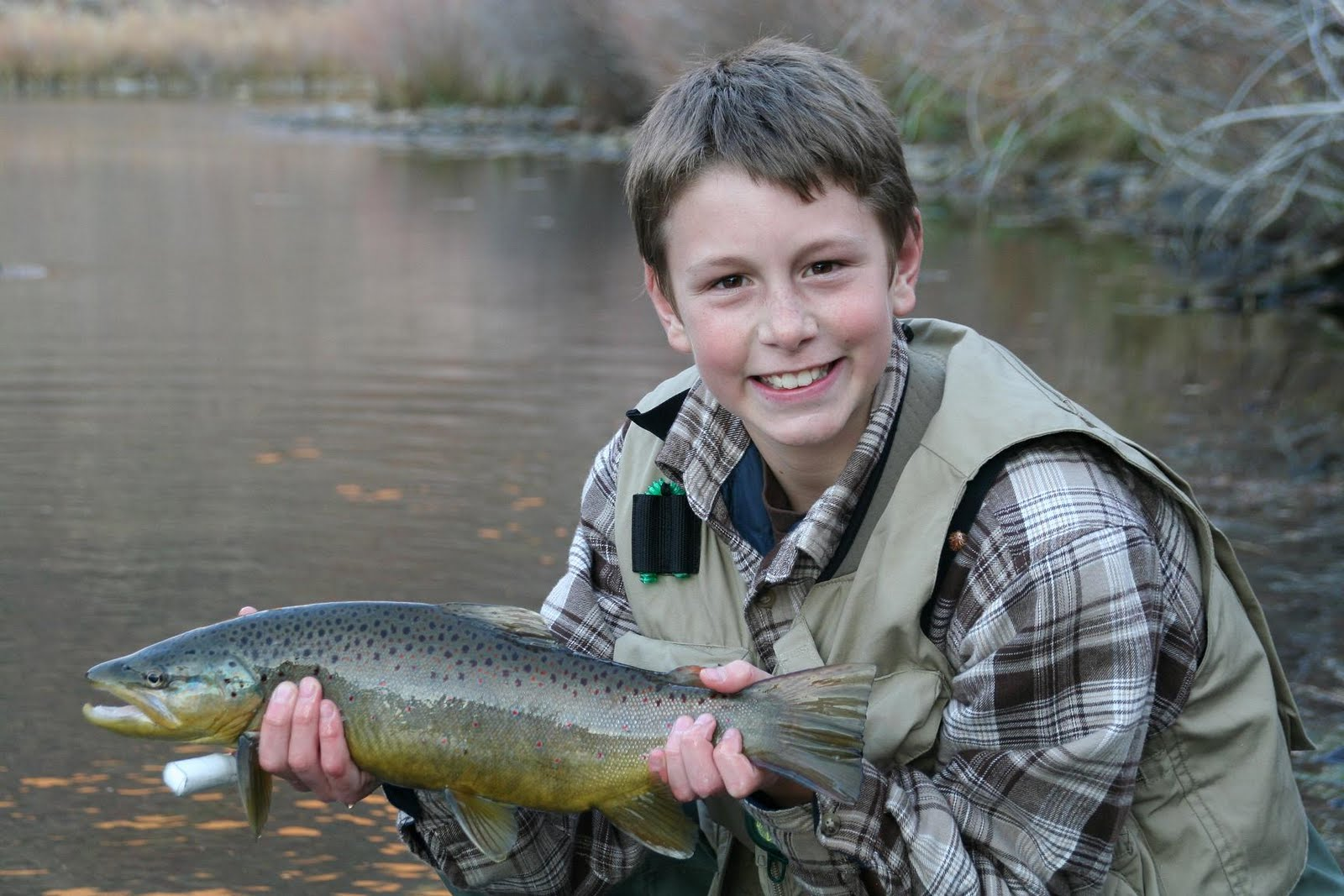 The fly and i for Owyhee river fishing report