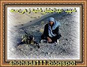 شهید عبدالجلیل شنبه زهی (سعد،صدیق)