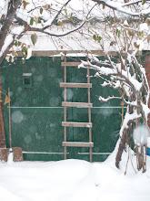 Snow storm in Korea