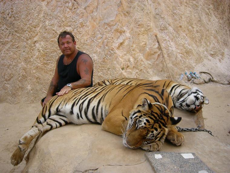 tigertemple in kanchanaburi