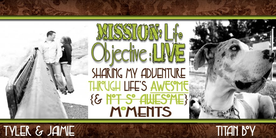 Mission: Life; Objective: Live