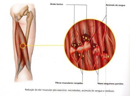Pontos de aumento em um pênis