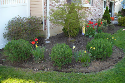 Bay Window Garden Ideas how to replace an existing window with a garden window garden windows diy network and window Fast Forward To May 9 2009 It Is Amazing How Fast Plants Grow And Bloom In The Spring I Love This Corner Of The Landscape The Bulbs Are Done