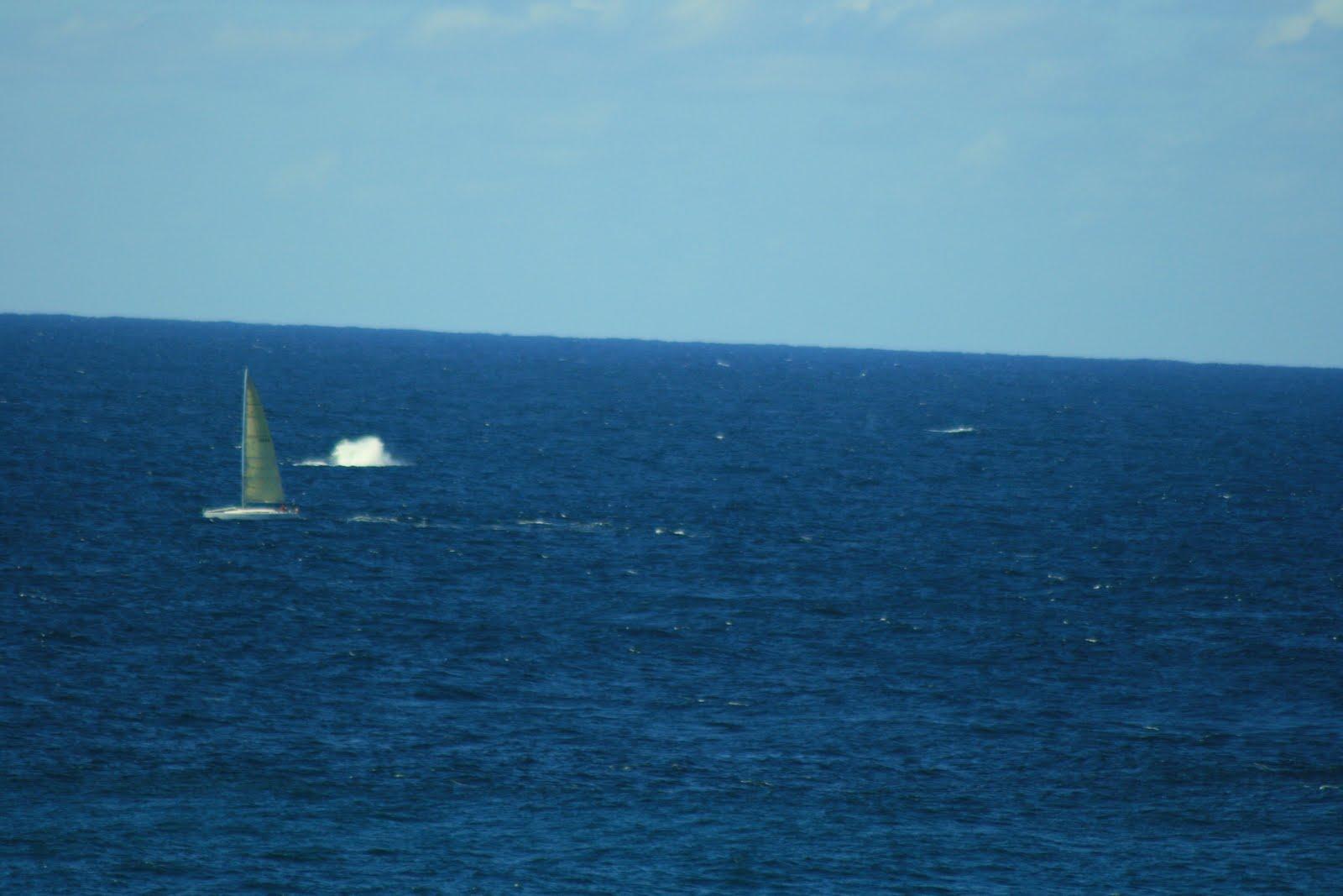 Missing The Point Stradbroke Island