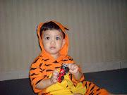 i'm a baby tiger...