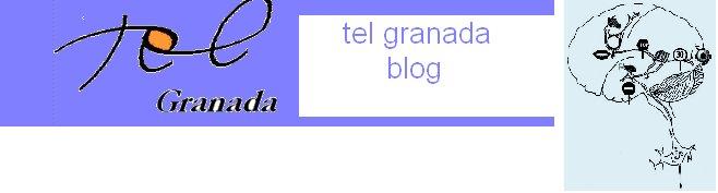 TEL-GRANADA  DISFASIA Y LOGOPEDIA blog