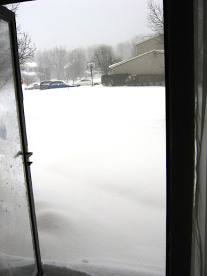 This was my view of my front yard, driveway and street… I think.