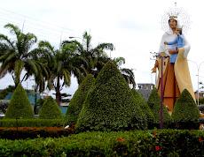 Entrada a Higuerote, Virgen del Carmen estrella del Mar, guía de los marineros