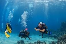 Estamos formando un grupo de submarinismo en la UNE. Tú puedes ser parte de él.