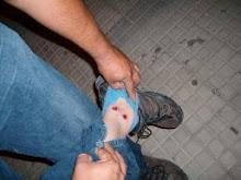 Balas de goma a vecinos de Andalgalá
