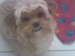 Bibita!!!