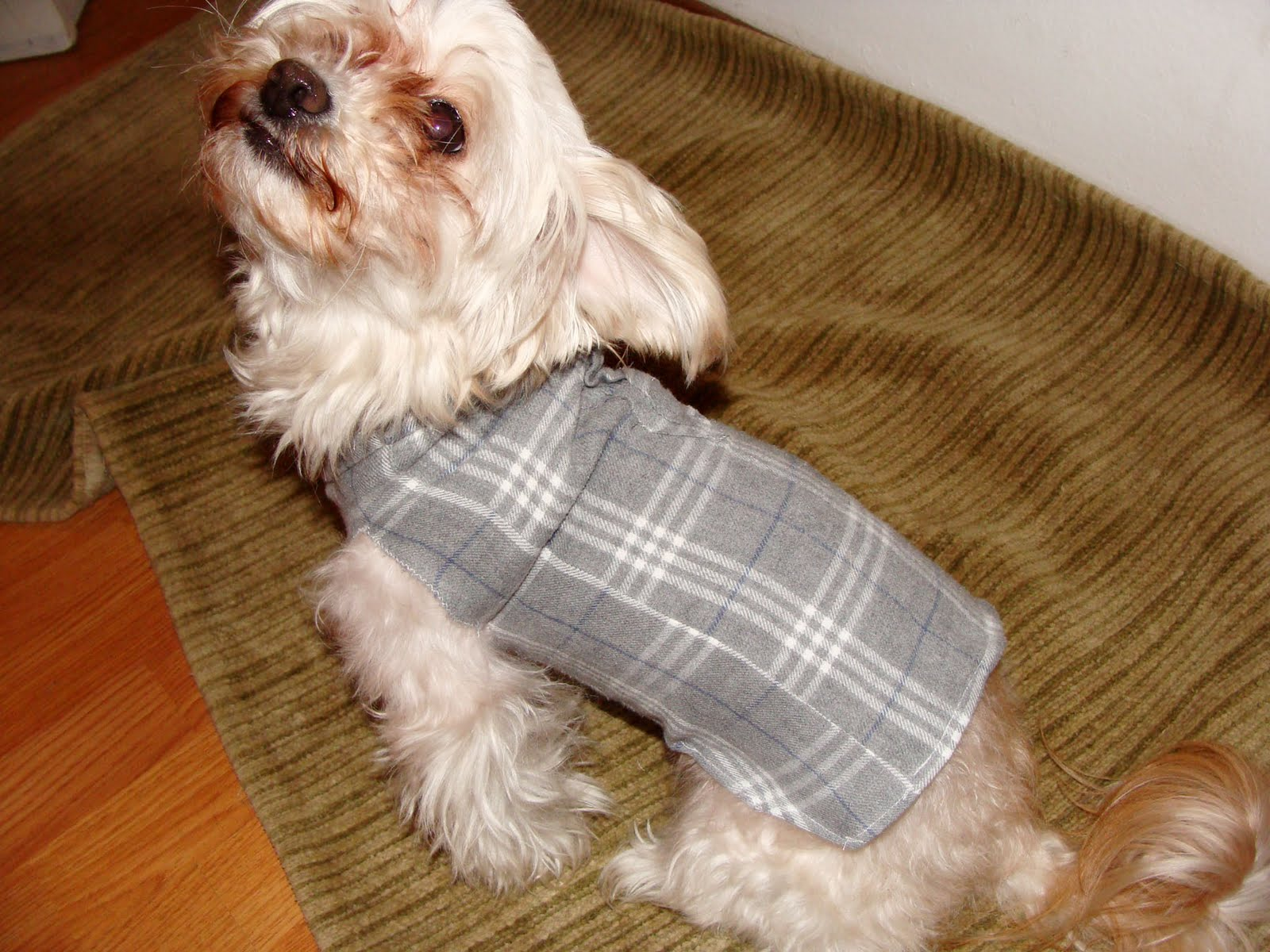 how to make a dog sweater without sewing