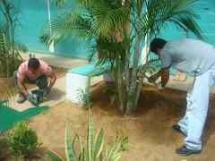 pintando los pasillo y arreglando las plantas