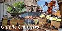 Blog Galpão Campeiro