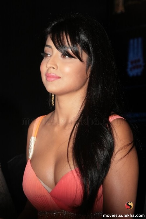 Boob Press Of Shreya Saran -
