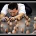 Pria Mampu Menyusun Ribuan Telur pada Posisi Berdiri