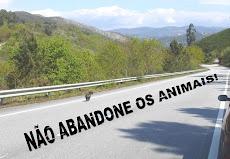 Nao Abandone