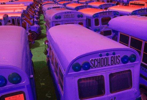 [buses.jpg]
