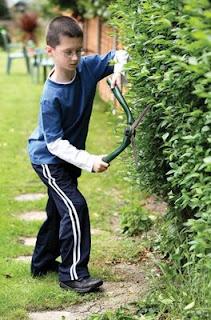 NAMC montessori students community service volunteering compassion trim hedges