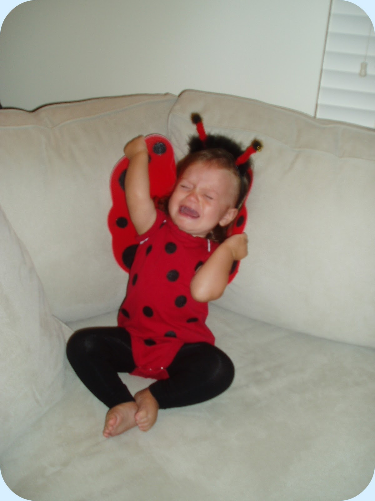 Spartan living homemade toddler costume fit for a little ladybug and smile as you realize that your sweet little one strongly dislikes the costume you made her at least we have some time between now and halloween to solutioingenieria Image collections