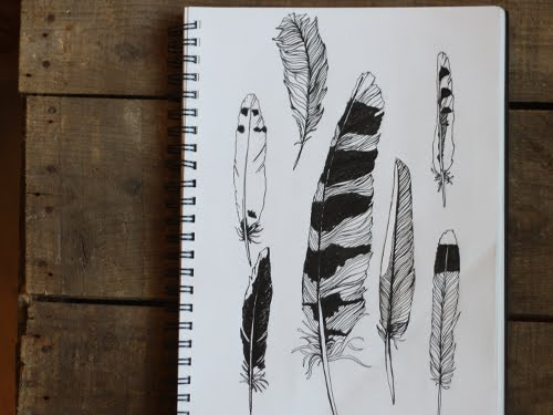 Feather Pen Set Feather quill wood pen metal nibs and ink