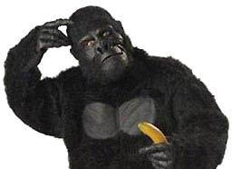 [gorilla+w+banana]