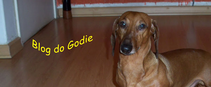 Blog do Godie