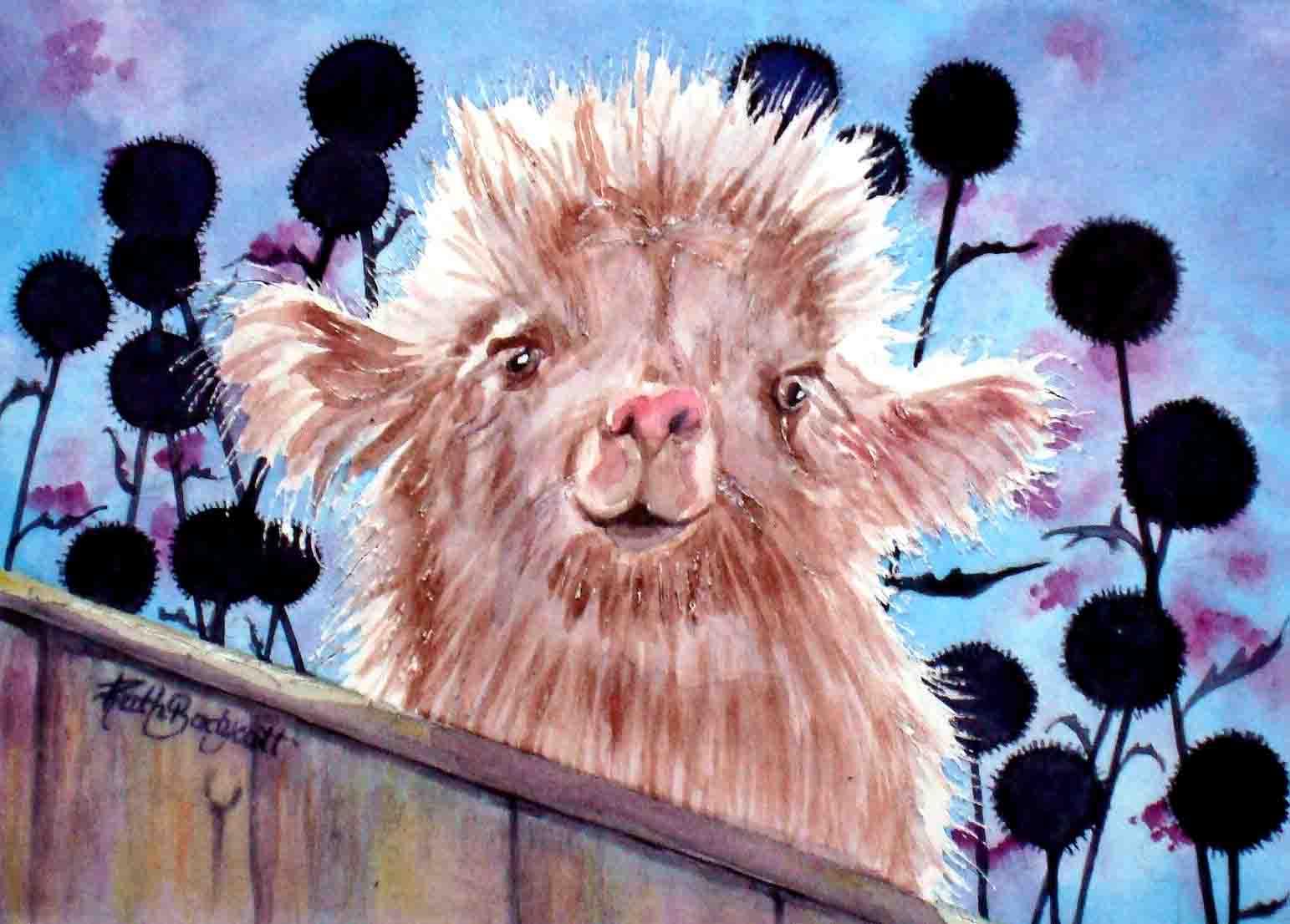 Baby Llama Paintings