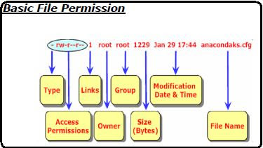 permission chmod Linux command