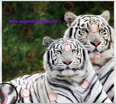 Animal Hidden Numbers Ayuda