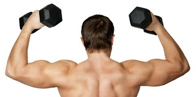 Well-Defined Shoulders