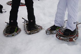 We went out on our homemade snowshoes, and we went through a lot of stopping to fix our snowshoes and add modifications. We managed not to destroy our ...