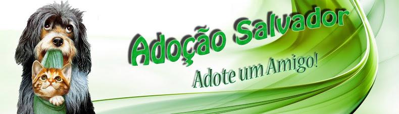 Adoção Salvador