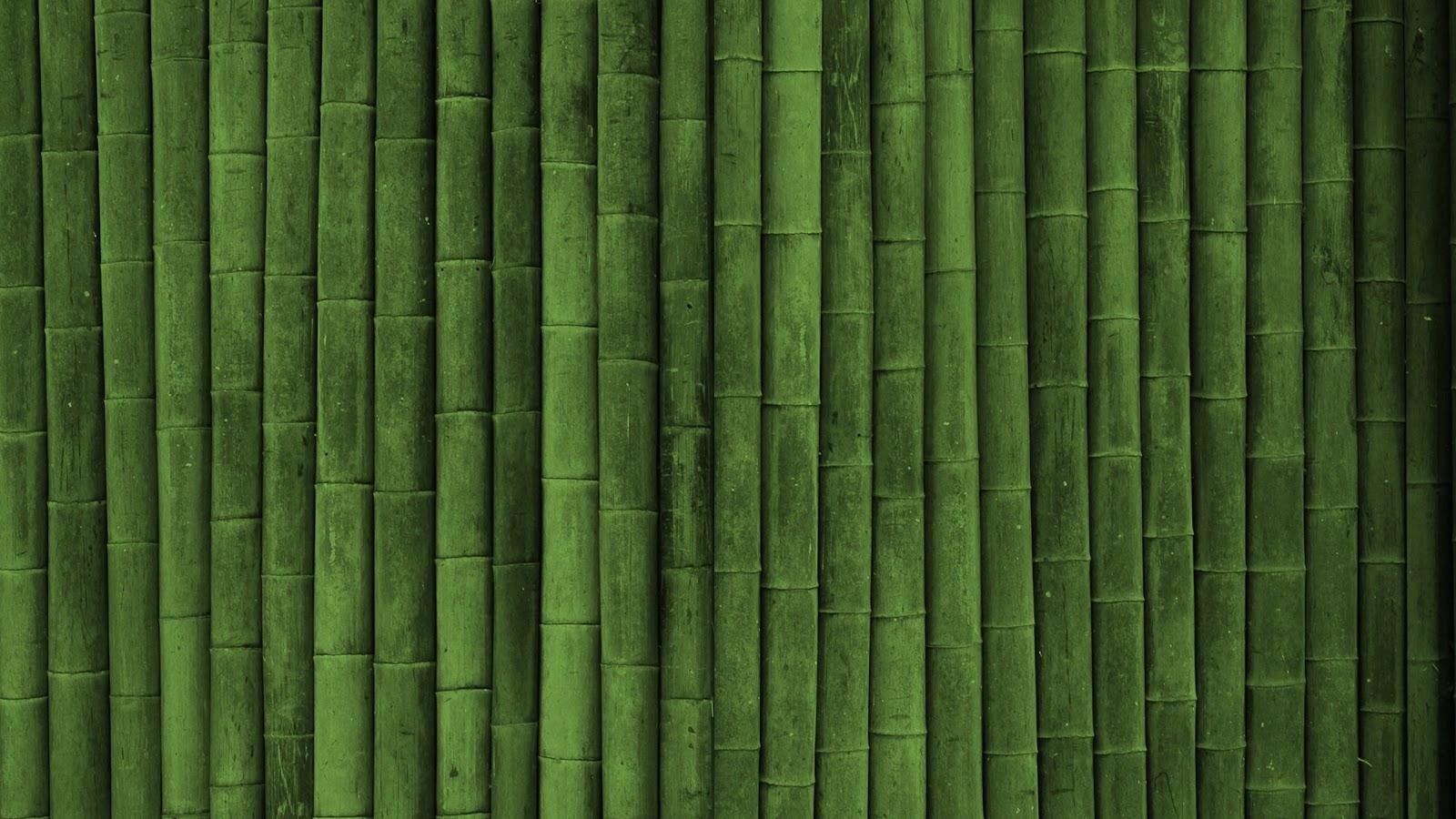 http://3.bp.blogspot.com/_Gq1jO6iuU2U/TSfdakwcD4I/AAAAAAAAHWA/b1BcRTyNAuQ/s1600/green+bamboo+wall+hd+wallpaper+-2560x1440.jpg