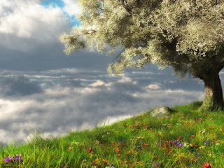 Nature 3D Rendering Almost Real Abstract CG HD Wallpaper