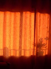 Sol en la ventana