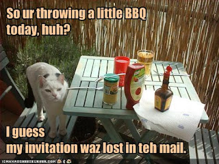 LOLcat at a BBQ