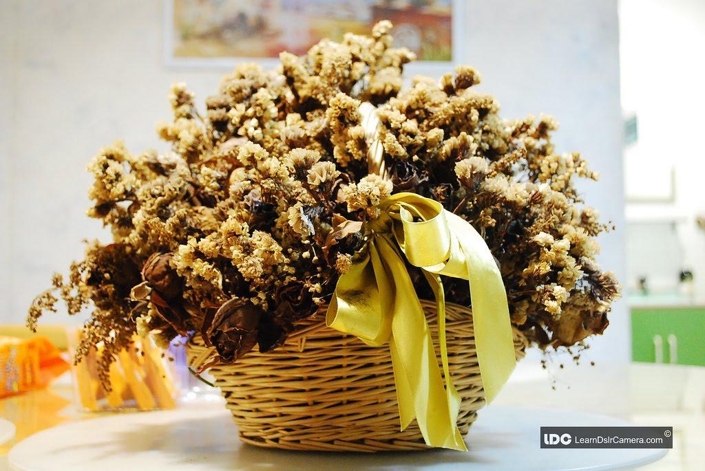 Decoraci n de rincones arreglos con flores y plantas secas - Plantas secas decoracion ...
