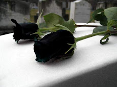 mi amada Rosa Negra