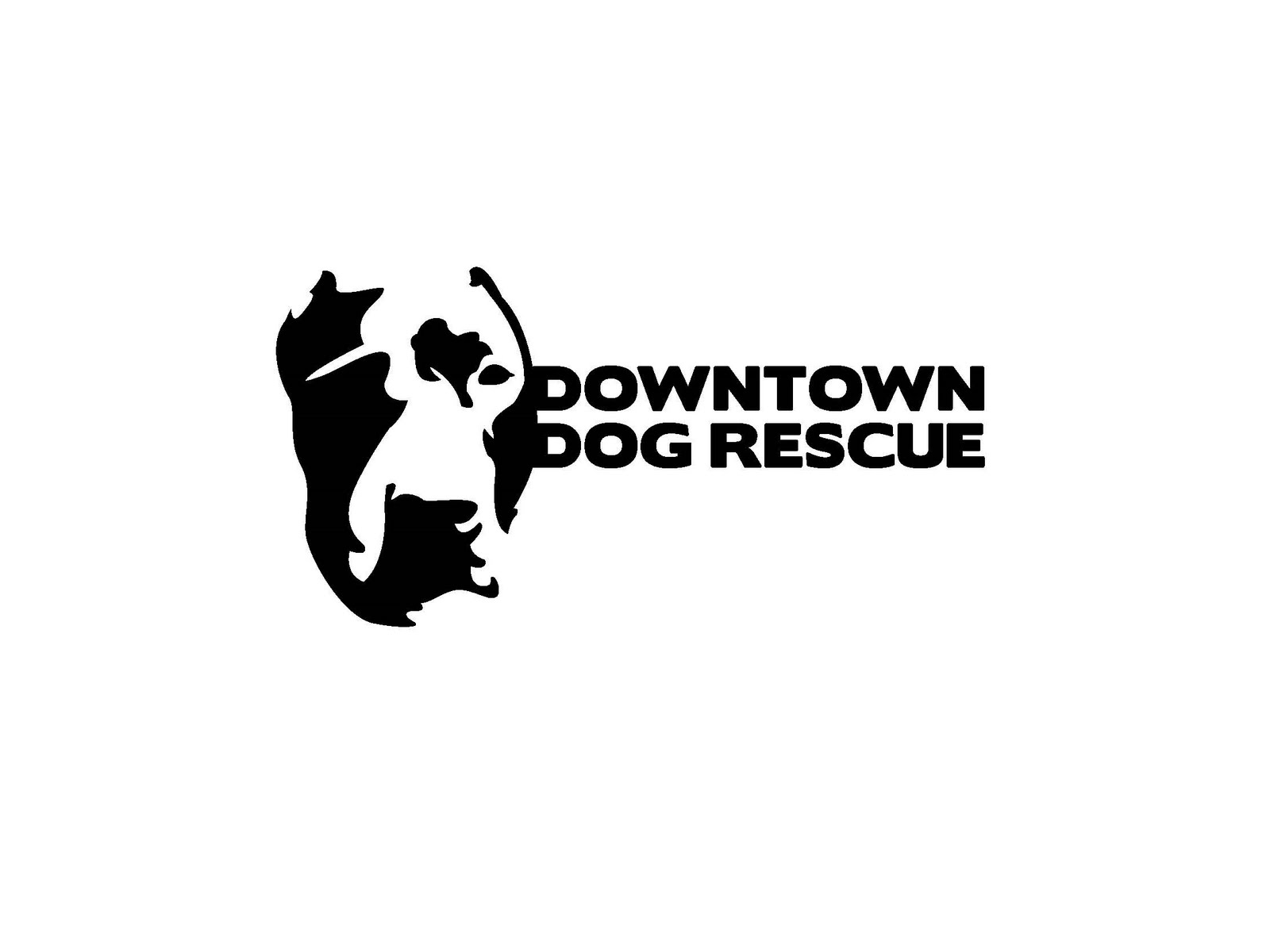 Ddr Programs Cgc Testing Downtown Dog Rescue