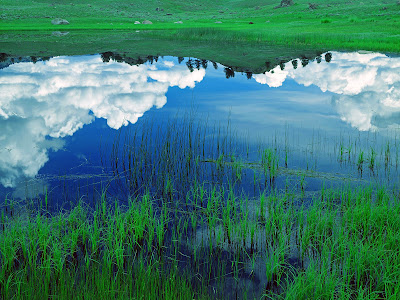 beauty of the earth, reflection of the sky