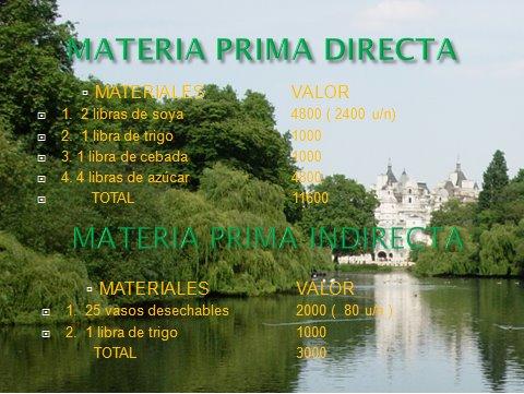 COSTOS ( MATERIA PRIMA )